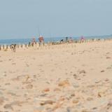 Plaża w Gąskach